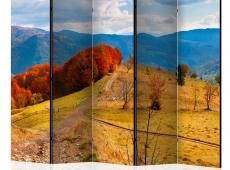 Paraván - Autumn landscape in the Carpathian mountains II [Room Dividers]